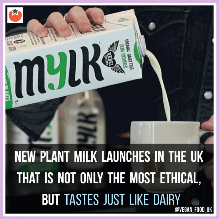 New Game-Changing Plant Milk Launches In The UK That Is Ethical and Taste Just Like Dairy
