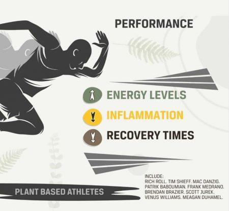 Plant Hustler's Infographic Regarding Performance Of Plant Based Athletes