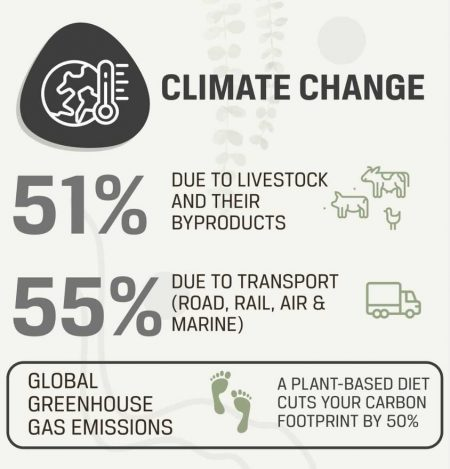 Plant Hustler's Infographic Regarding Climate Change